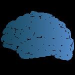 Breincollectief Favicon